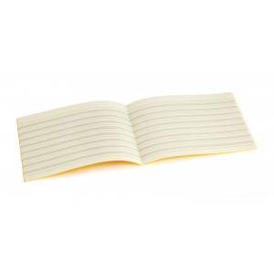 Tinted Handwriting Exercise Books